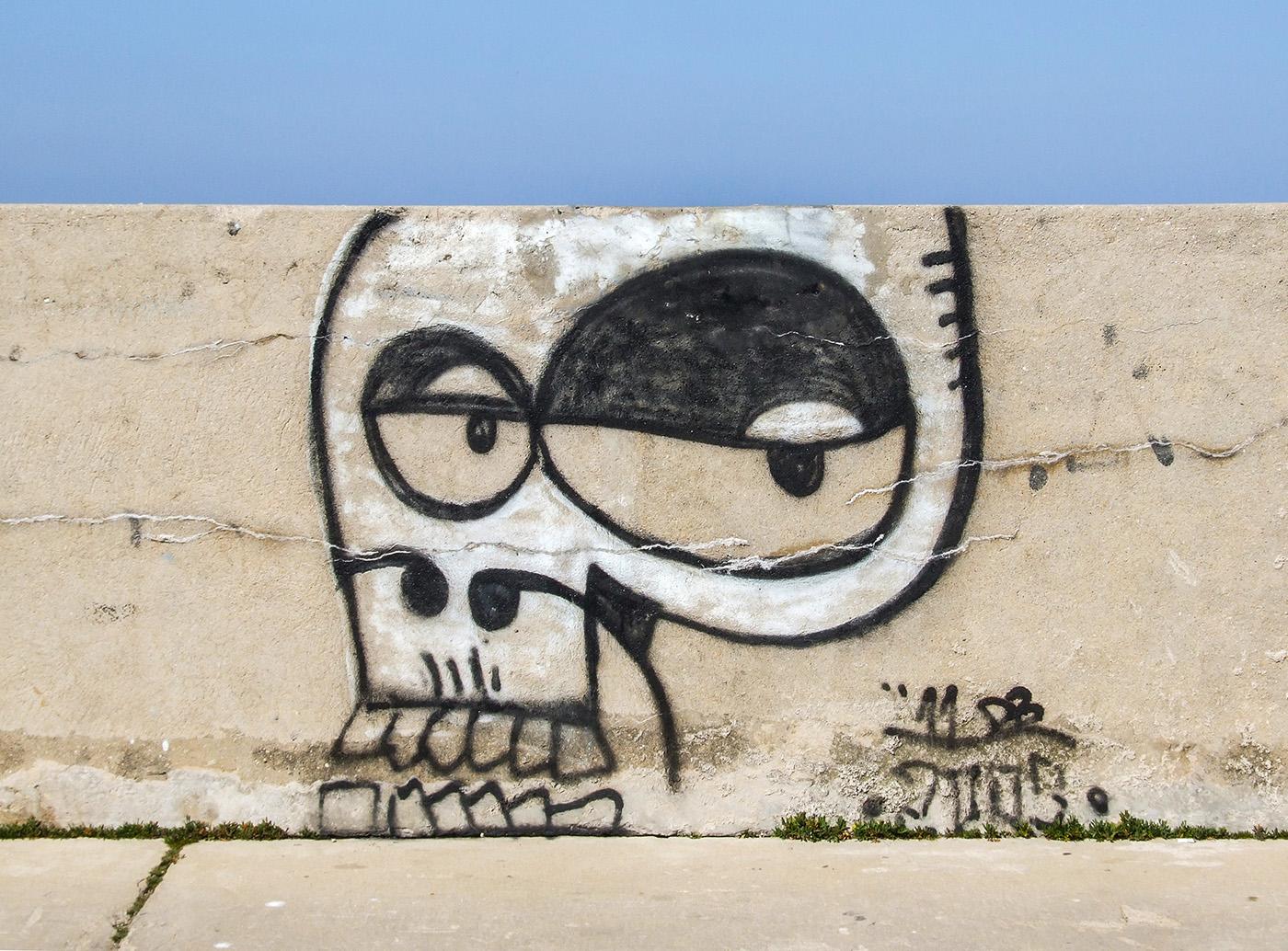 Tags graffiti skull